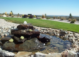 denver-landscaping-design-10