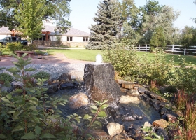 denver-landscaping-design-4