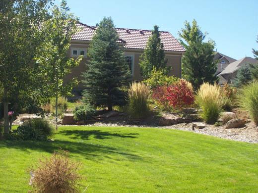 Landscaping Mulch Denver : Denver landscaping xeriscaping