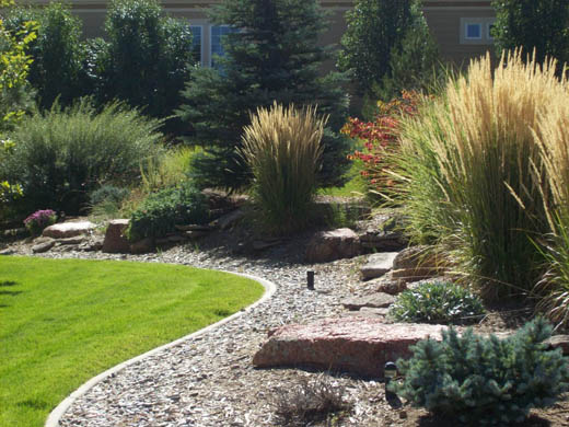 denver-landscaping-xeriscape7
