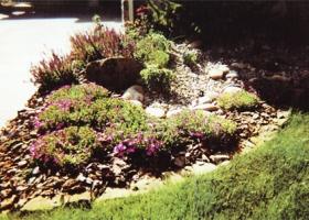denver-landscaping-xeriscape2