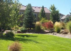 denver-landscaping-xeriscape5