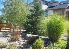denver-landscaping-xeriscape6