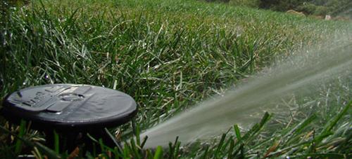 Landscaping Arvada Affordable Sprinkler Landscape