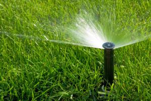 Sprinklers Denver   Affordable Sprinkler and Landscape